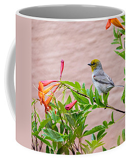 Coffee Mug featuring the photograph Backyard Verdin by Dan McManus
