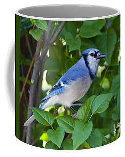 Backyard Visitor Coffee Mug