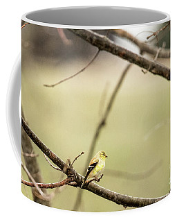 Backyard Yellow Coffee Mug