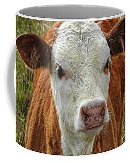 Bad Boy Bad Boy Whatcha Gonna Do - Cow Calf #611 Coffee Mug by Ella Kaye Dickey
