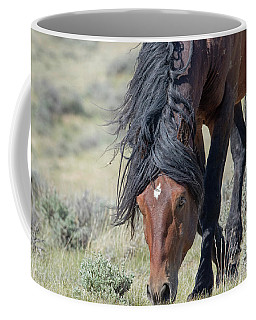 Coffee Mug featuring the photograph On The Prowl by Ronnie and Frances Howard