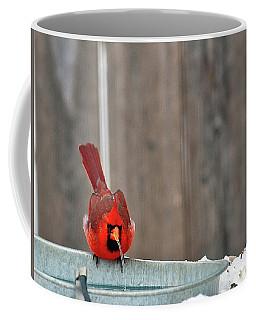 Bad Water Coffee Mug