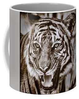 Baheem Snarl Coffee Mug by Elaine Malott