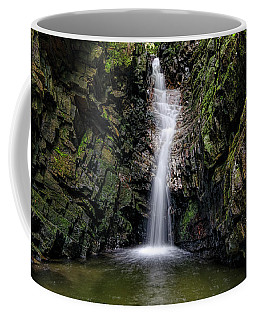 Bailey Falls Coffee Mug