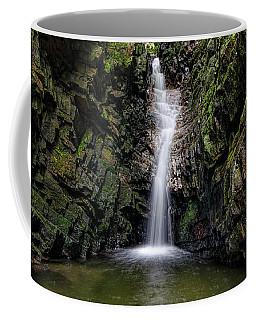 Bailey Falls Coffee Mug
