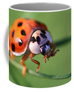 Coffee Mug featuring the photograph Balancing Act by William Selander