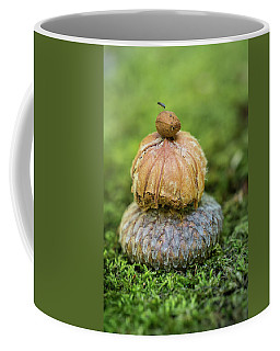 Coffee Mug featuring the photograph Balance With Nature by Dale Kincaid