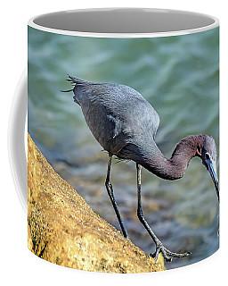 Balancing For Breakfast Coffee Mug