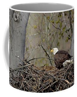 Bald Eagle 01 Coffee Mug by Ann Bridges