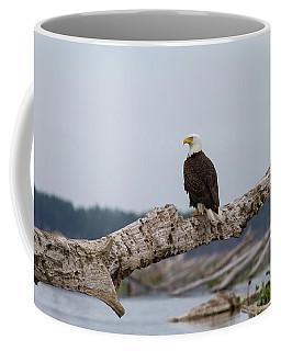 Bald Eagle #1 Coffee Mug