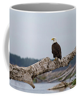 Bald Eagle #1 Coffee Mug