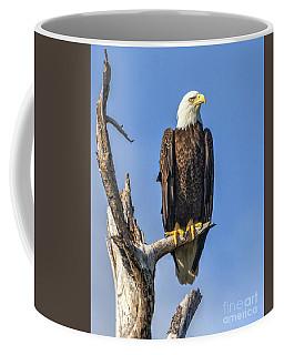Bald Eagle 6366 Coffee Mug