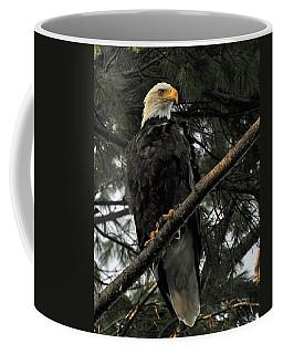 Bald Eagle Coffee Mug by Glenn Gordon