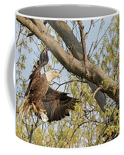 Bald Eagle Catch Of The Day  Coffee Mug