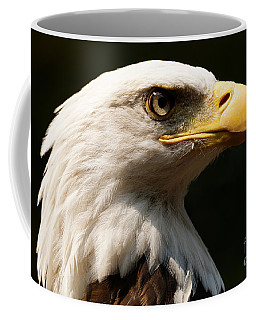 Bald Eagle Delight Coffee Mug
