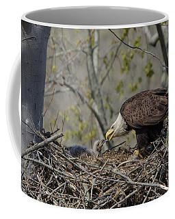 Bald Eagle Feeding Coffee Mug by Ann Bridges