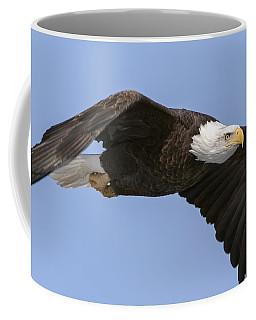 Bald Eagle Flight 2 Coffee Mug
