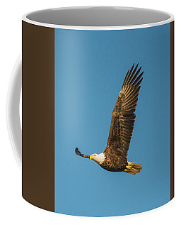 Bald Eagle Fly-by Coffee Mug