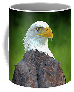 Bald Eagle Coffee Mug by Franziskus Pfleghart
