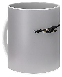 Bald Eagle Gliding Coffee Mug by Timothy Latta