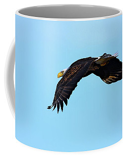 Bald Eagle Horizons Coffee Mug