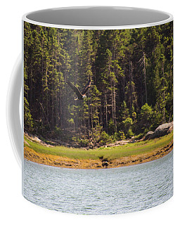 Coffee Mug featuring the photograph Bald Eagle In Flight by Trace Kittrell