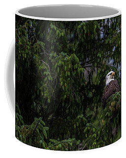 Bald Eagle In The Tree Coffee Mug