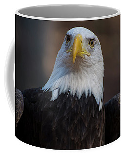 Bald Eagle Looking Right Coffee Mug