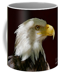 Bald Eagle - Majestic Portrait Coffee Mug
