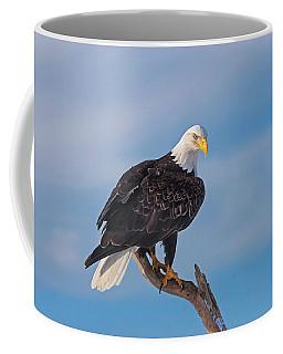 Bald Eagle Majesty Coffee Mug