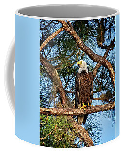 Bald Eagle Near Nest Coffee Mug