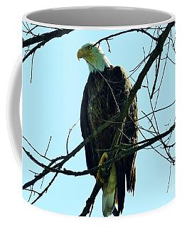 Bald Eagle Over The Root River Coffee Mug