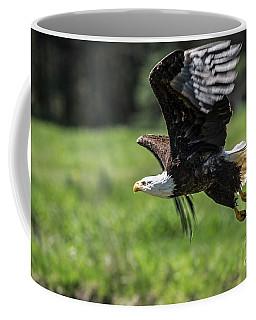 Bald Eagle-3372 Coffee Mug
