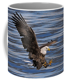 Bald Eagle Strike Coffee Mug