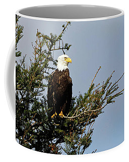 Bald Eagle - Taking A Break Coffee Mug