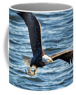 Bald Eagle With Fish Coffee Mug