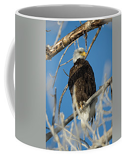 Bald Eagle With Pogo Nip Coffee Mug