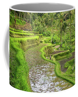 Bali - Rice Fields Terraces Coffee Mug