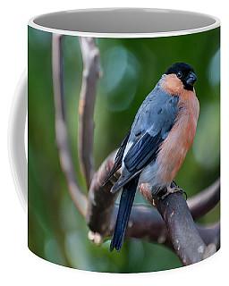 Ball Finch Coffee Mug