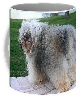 ball of fur Havanese dog Coffee Mug by Sally Weigand