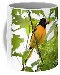Baltimore Oriole With Raspberry  Coffee Mug by Ricky L Jones