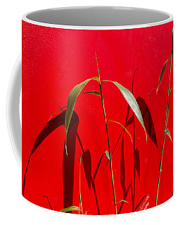 Bamboo Against Red Wall Coffee Mug