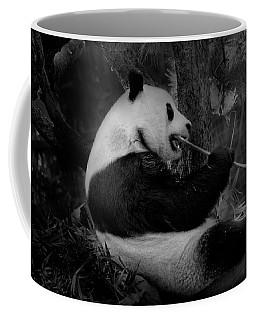 Bamboo, Bamboo, Bamboo Coffee Mug