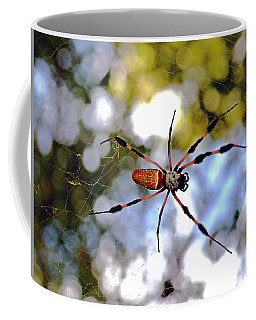 Banana Spider   1 Coffee Mug