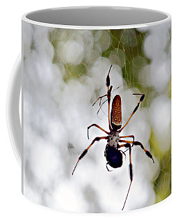 Banana Spider Lunch Time 2 Coffee Mug