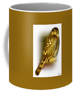 Coffee Mug featuring the photograph Banded Coopers Hawk by Barbara S Nickerson