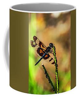 Banded Wings Coffee Mug by Ken Frischkorn