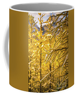 Banff Larch Valley Forest Of Gold Coffee Mug