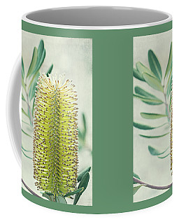 Coffee Mug featuring the photograph Banksia by Linda Lees