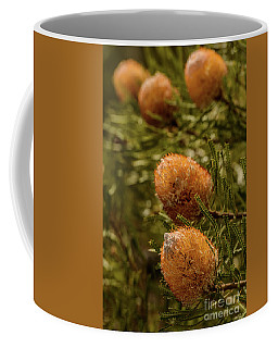 Coffee Mug featuring the photograph Banksia by Werner Padarin
